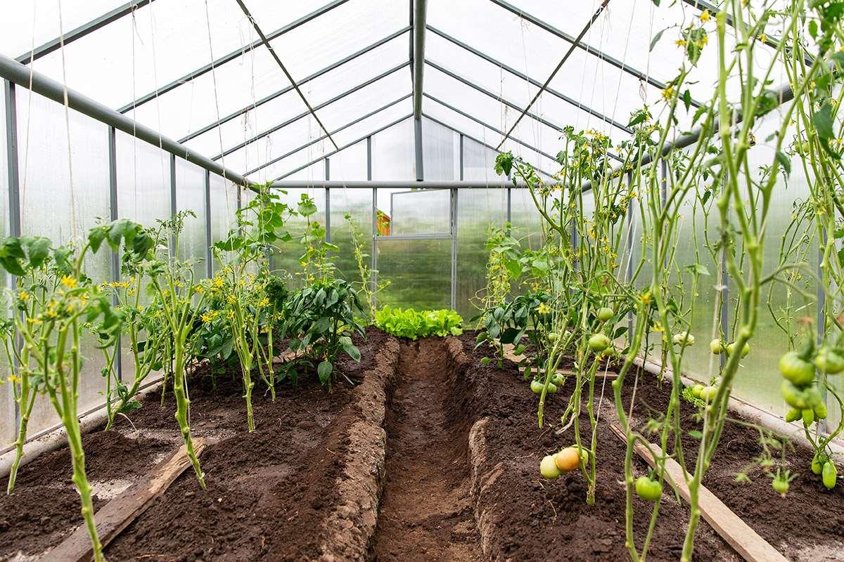 polikarbon modern tarım alanında kullanımı
